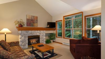 Spacious Living Area with Gas Fireplace, Flat Screen TV, Foreste