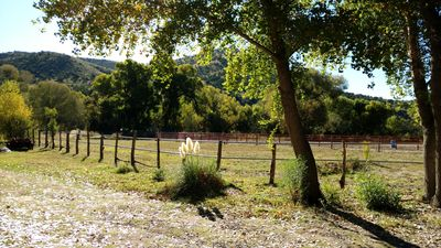 Gila west glenwood new mexico for Hideout cabins glenwood