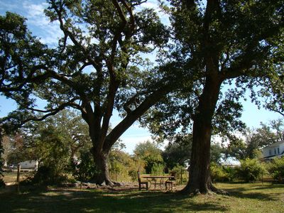 Enjoy a simple meal under live oaks