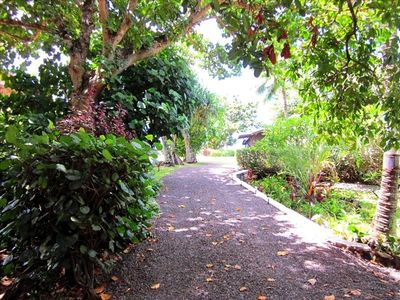 Beautiful property with many large  indigenous trees, flowers and plants.
