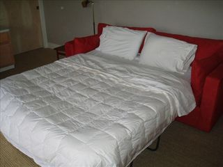 Healdsburg house photo - Bedroom 4: Queen sofa bed