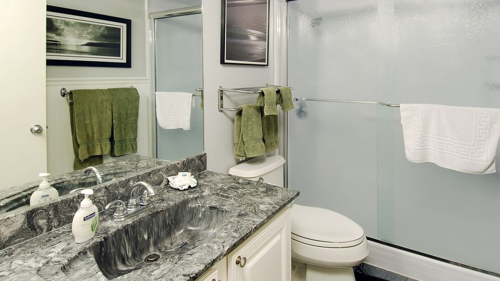 Remodeled master bath, large walk in shower, fluffy Egyptian cotton towels