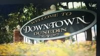PRIME LOCATION ! 3 bedroom with in ground pool ONLY 6 blocks to Downtown Dunedin