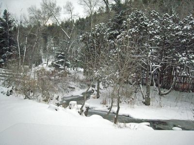 Taos river and forest beyond winter 2010