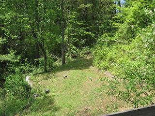 Black Mountain cabin photo - View of Side yard from hot tub