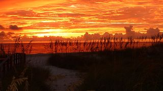 Redington Shores condo photo - Fall on the beach!!