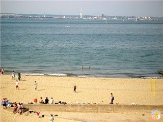 Ryde apartment rental - Beach View from Crows Nest Lounge