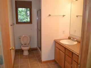 Lake Wallenpaupack property rental photo - Bathroom