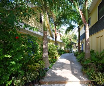Entrance to property lined with palms leads you right to the pool!