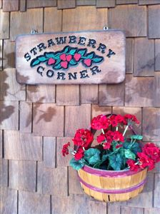Strawberry Corner awaits you! Large flat prominent location. Circular driveway.