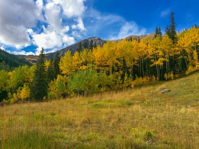 Pagosa Springs incredible golden aspens in the fall!