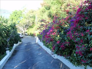 Northside villa photo - Gated Driveway to Parking --- Beautiful Flowers