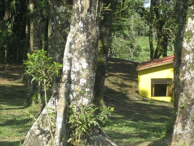 Finca Soñada is nestled amidst the trees, yet only 300 meters from main road.