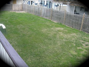 Backyard fenced in outside showers picnic benches gas grill