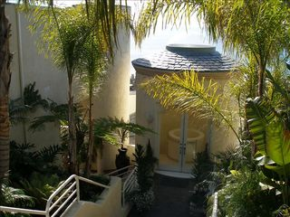 Laguna Beach house photo - TROPICAL LANDSCAPING ENTRY