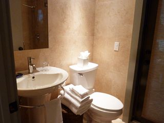 Boca Raton villa photo - Ensuite bathroom – with shower.
