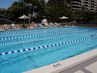 Key Biscayne apartment photo - Olympic size pool.