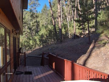 view from back of cabin leading into fenced yard