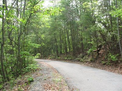 PRIVATELY OWNED PAVED ROAD WITH ONLY ONE OTHER CABIN, GREAT FOR HIKES