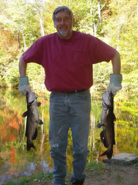 Dan's Huge Cats Caught at 1 of 8 Stocked Lakes