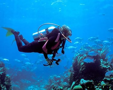 Diving on Roatan