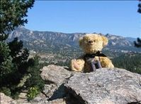 VRBO Bear enjoys scaling the rocks at Pinecone Cottage