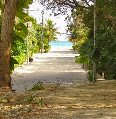Playa del Carmen house photo - Path to beach - located right behind house