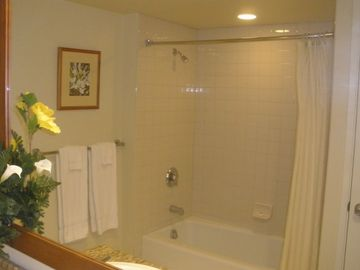 Shower tub combo.