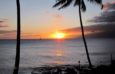 "Another picture perfect sunset....Aloha. Maui No Ka Oi. (""Maui is the best"")"