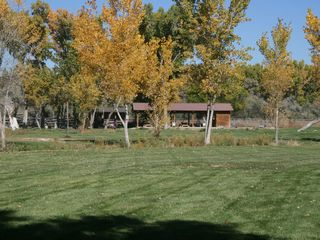 Farmington cabin photo - The front yard view as you drive up to Carter's Cabin.