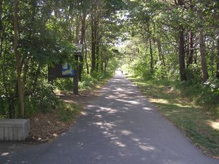 Start of Cape Cod Bike Trail - 300 yds away - Wellfleet cottage vacation rental photo