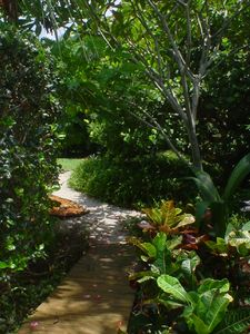 Garden pathways around home