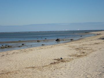 Cape Cod Bay. Miles of sandy beaches.