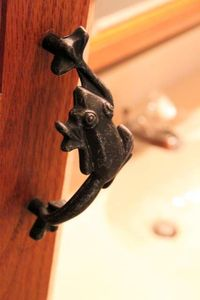 Frog hardware in master bath