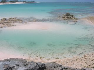 The Venus Pool...visible only at low tide! - Governor's Harbour villa vacation rental photo