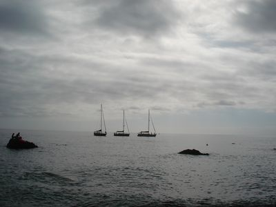 Perfectly lined up yachts Jardim do Mar