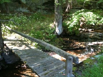 Footbridge over stream in back