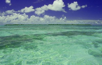 Beautiful florida keys waters! content keys