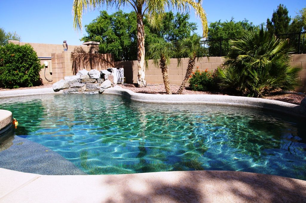 Private Desert Oasis With Tropical Backyard Vrbo