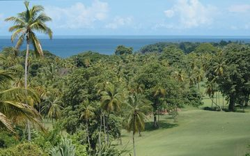 View of Golf Course and Caribbean