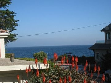 Pacific Grove house rental - VIEW FROM SIDE LIVING ROOM WINDOW!