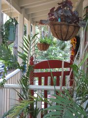 Tampa cottage photo - Begonia, Bamboo palms dress this 1923 craftman cottage