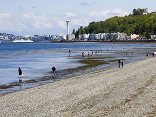 Miles of Beach combing - Seattle house vacation rental photo