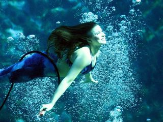 Weeki Wachee house photo - Weeki Wachee Mermaid