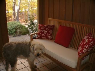 Greensboro house photo - Pet Friendly NC Vacation Rental. Foyer area at main entrance of the home.