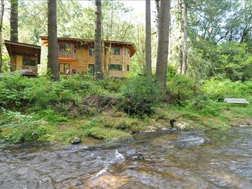 Coos Bay house rental - View from across Glenn Creek, hammock on the left,