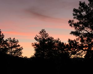 Pagosa Springs house photo - Your Quiet Sunrise at Apple Mountain Ranch