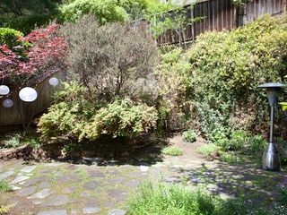 Sausalito house photo - front garden