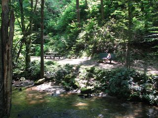 Bryson City cabin photo - Picnic table and sitting bench along Creekside Trail