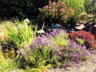 Portland apartment photo - Garden Pond